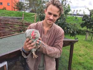 Kippen op de voedseltuin, deze heet Mozes.